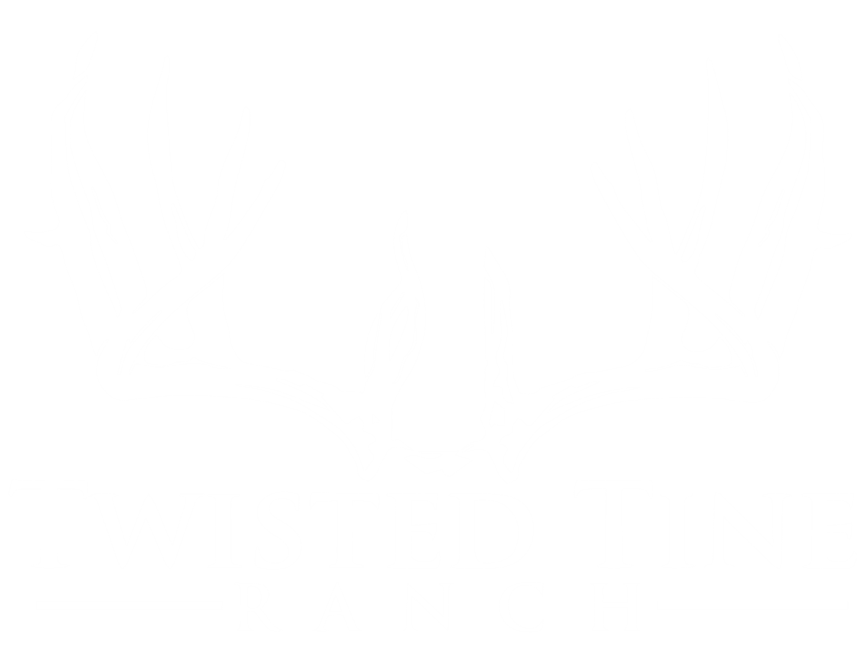 Texas Deer Hunts - Twisted Tine Ranch