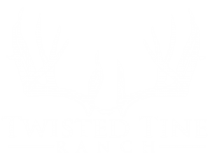South Texas Deer Hunts